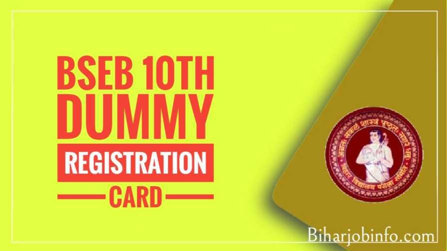 bseb 10th dummy registration card
